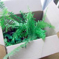 Как дарить растения зимой